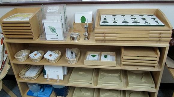 AMI Montessori training puzzles
