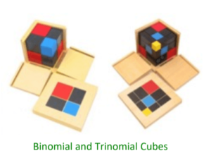 Binomial and Trinomial Cubes