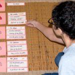 Exploration of Culture through reading activities - Language - RTI Montessori Training